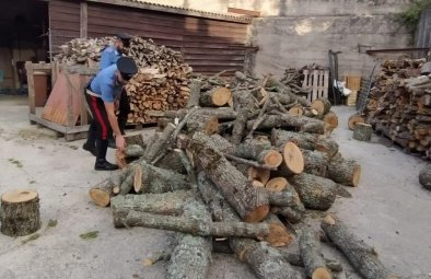 Tentato furto di legna - arresti CC Mistretta (2)