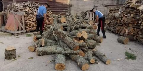 Tentato furto di legna - arresti CC Mistretta (4)