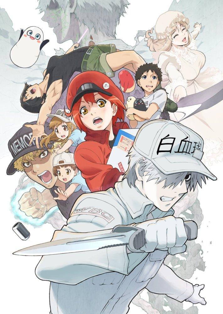 Segunda Temporada de Hataraku Saibou estreia em Janeiro de 2021