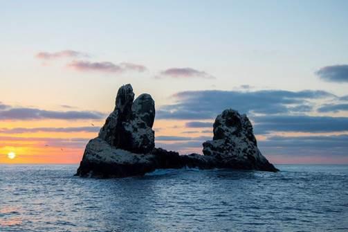 Un aspecto del Parque Nacional Marino de no pesca de Revillagigedo. SEMARNAT
