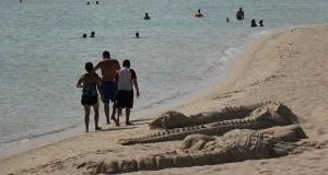 Combate, en Cabo Rojo. (Voces del Sur)