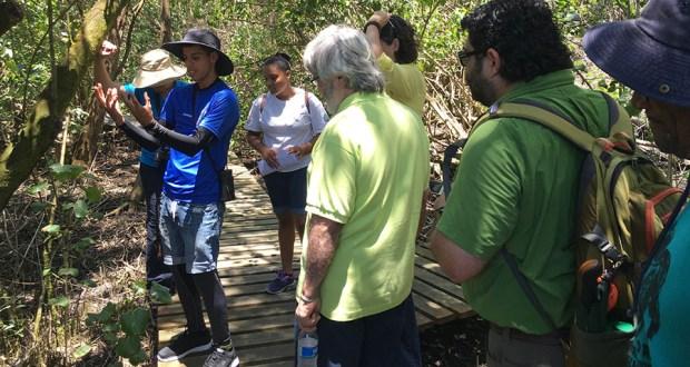 Hery Colón Zayas es intérprete de veredas y forma parte del programa Desde el barrio, presentado por IDEBAJO. (Voces del Sur)