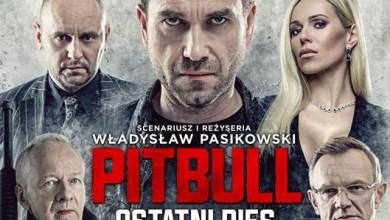 """Photo of Premiery we wrześniu: """"Pitbull. Ostatni pies"""", """"Taxi 5"""" i """"Śmierć Stalina"""""""