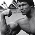 De 4 beste biceps oefeningen