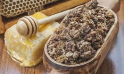 propolis als natuurlijk antibioticum