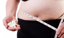 beste fatburners test