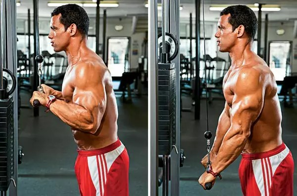 cable tricep pushdown uitvoering