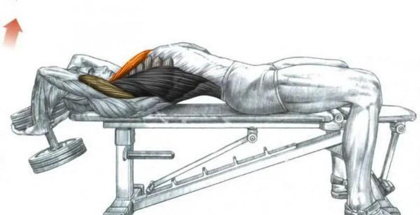 binnenkant borst fitness