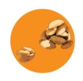 Bol noten