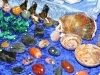 Mineralienbörse in der Greizer Vogtlandhalle