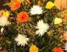 Neujahrsempfang des Greizer Bürgermeister