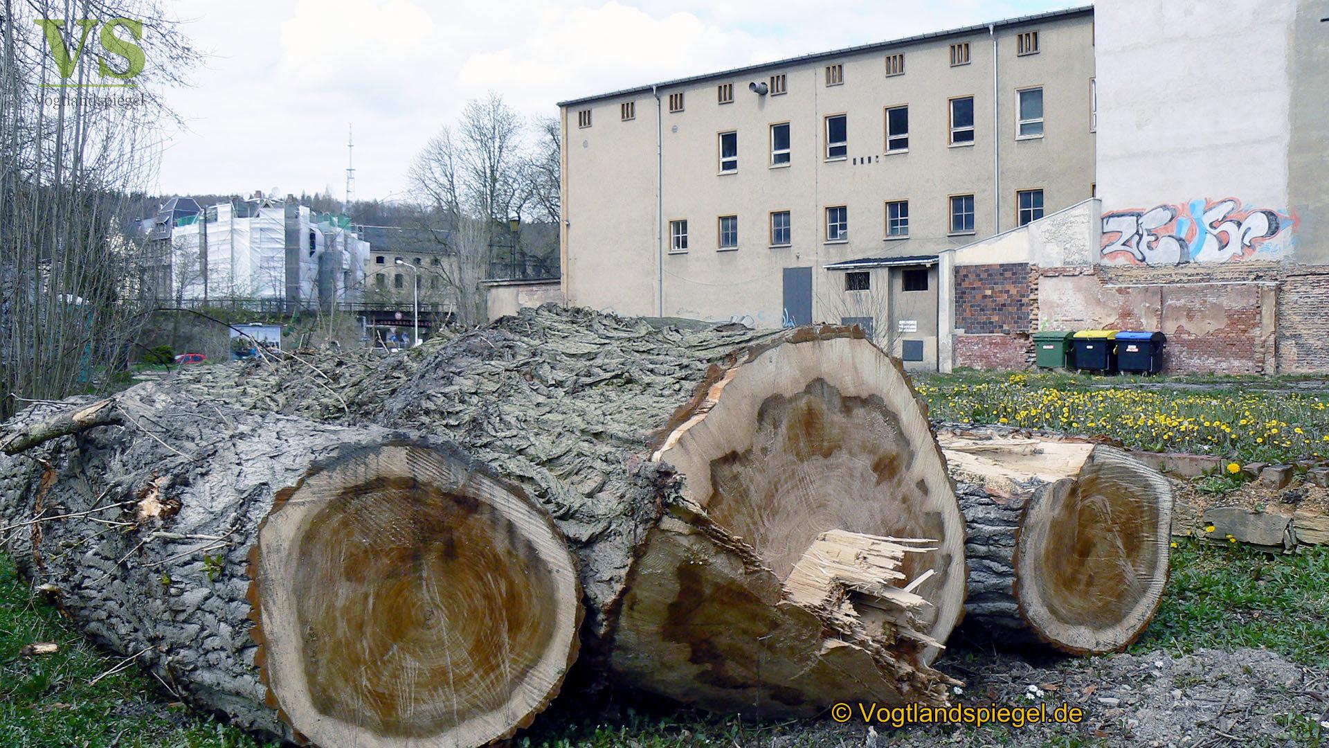 Vorbereitungen zum Bau einer neuen Stadthalle in Greiz