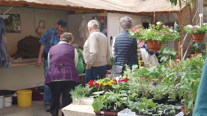 Gut besuchtes Frühlingsfest bei Gartenbau Dietzsch
