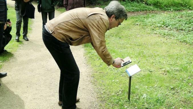 Präsentation Baumschilder im Fürstlich Greizer Park