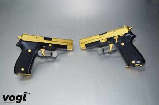 P226_P220_gold