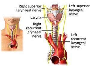 Vocal Paralysis Symptoms & Treatment