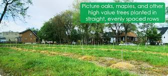 Hantz Farms proposal.