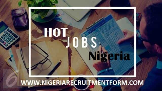 www.hotnigerianjobs.com portal