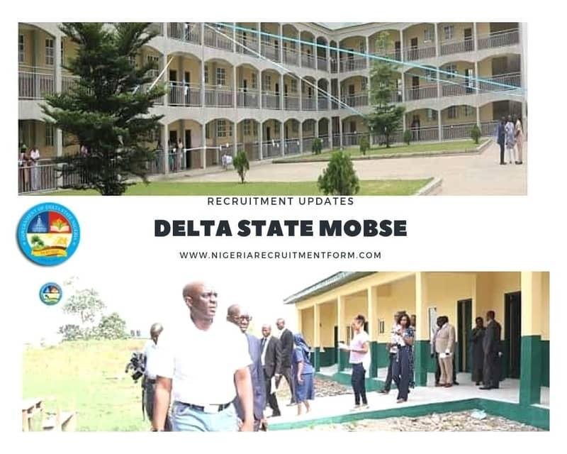 Delta State MOBSE