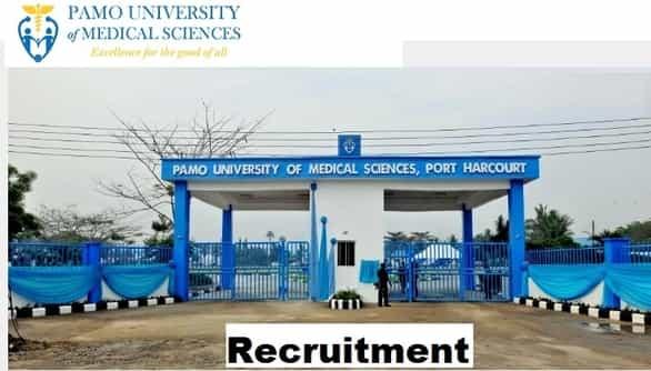 pamo university recruitment