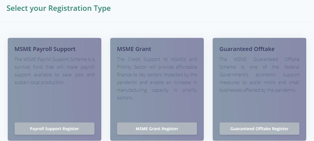 Survival Fund Application Portal