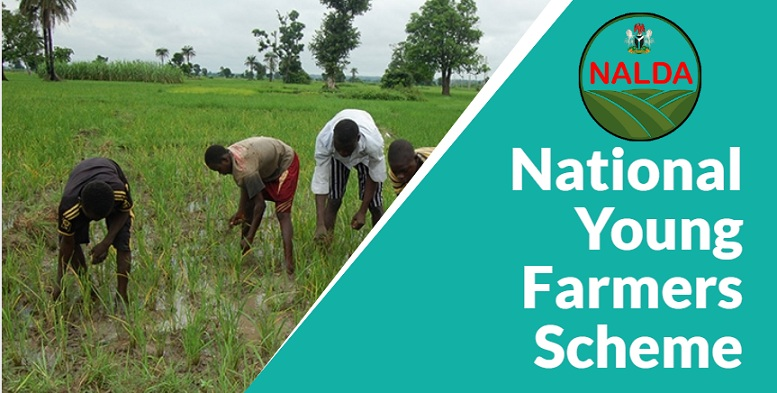 National Young Farmers Scheme