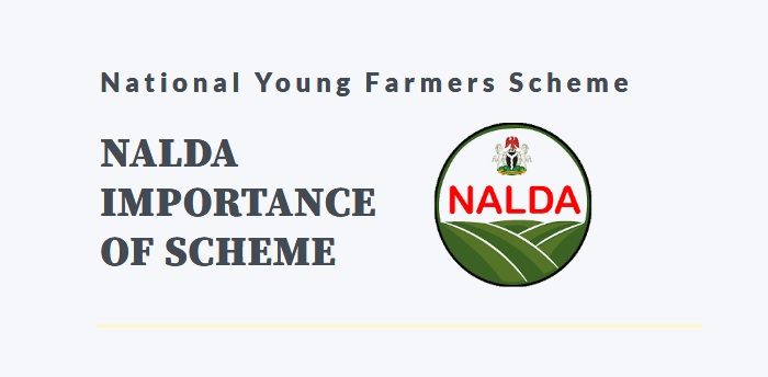 nigeria national young farmers scheme
