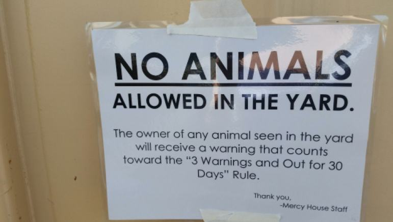 Mercy Houe check in sign on Animals
