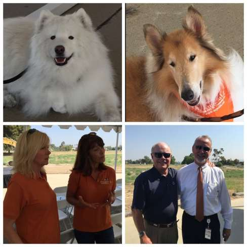 Therapy dogs, volunteers, former and current county staff all join in the celebration.