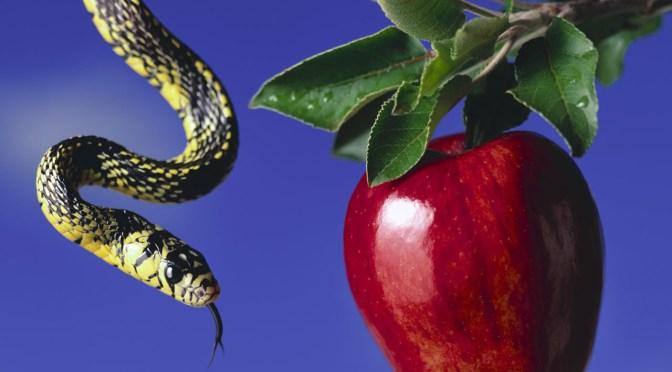 The Deceitfulness of Sin