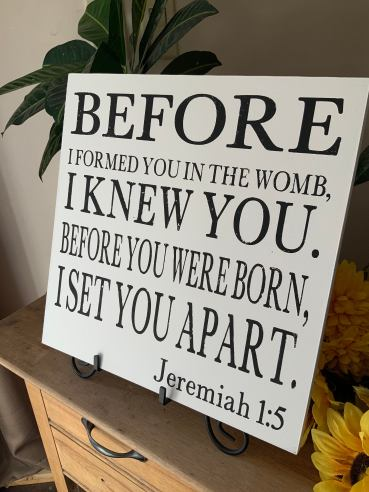 Before I formed you in the womb
