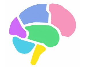 color_brain2