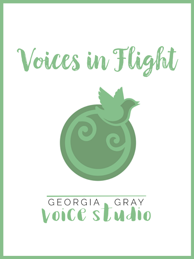 voices in flight group lessons