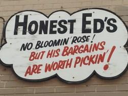 Honest Ed-Bloomin rose
