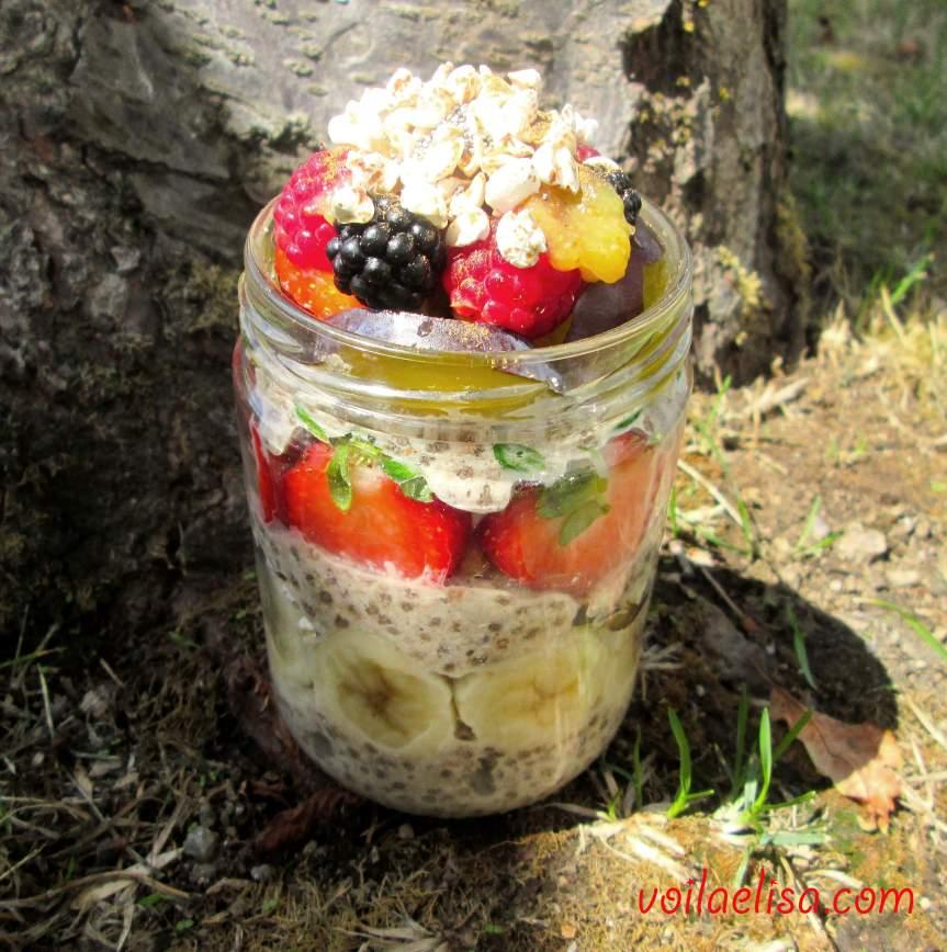 parfait-overnight-oats-porridge-gachas-sin-gluten