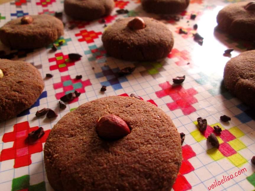 galletas-crudiveganas-algarroba-sin-gluten-sin-lactosa-sin-azucar-sin-horno-raw-cookies-coco-cacao-platano-datil-avellanas