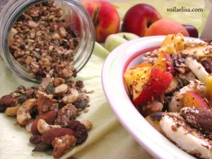 granola-avena-trigo-sarraceno-semillas-frutos-secos-nueces-almendras-amapola-coco-rallado-chips-aceite-coco-sirope-datil-leche-alpiste
