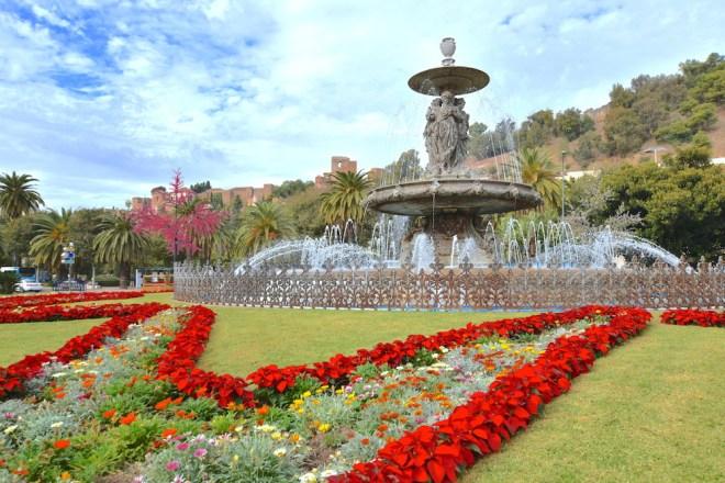 poinsettia malaga gardens