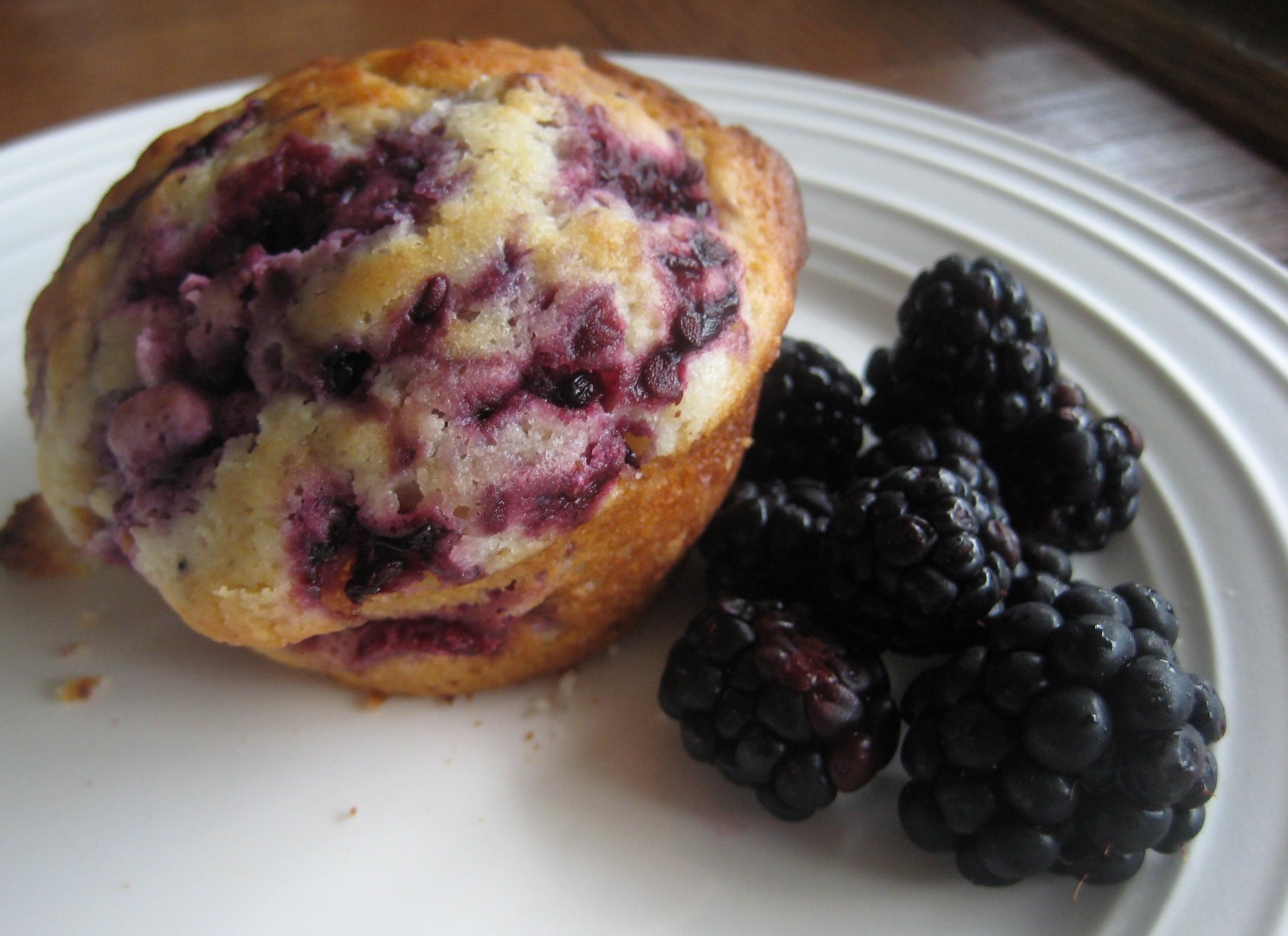 best blackberry muffins