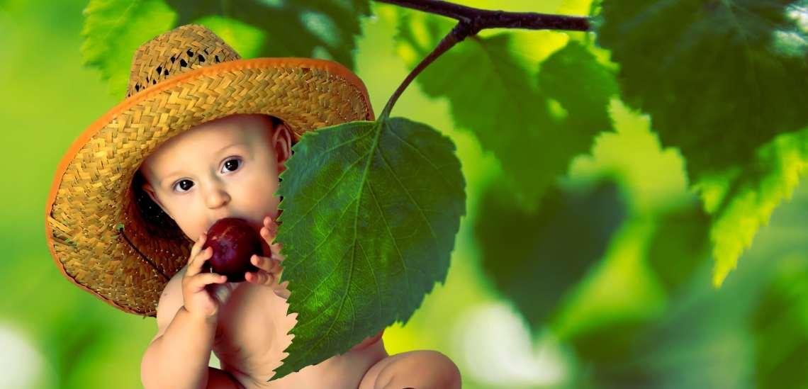 baby_eating_leaves_vegs