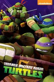 Les Tortues Ninja 2012 Saison 1 VF