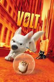 Volt, star malgré lui (2008)