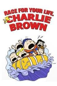 C'est ta course Charlie Brown ! (1977)