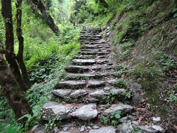 Escalier de pierre népalais