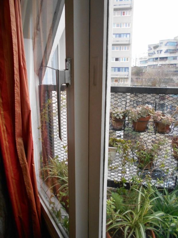 La terrasse en losange semble fusionner avec le logement