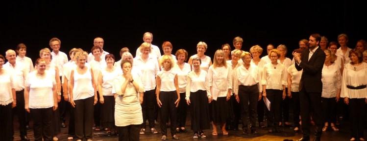 Salut concert Olav