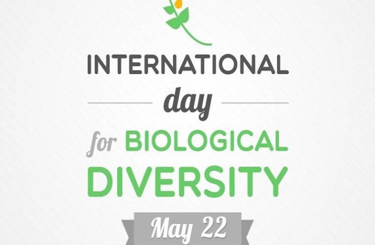 Danas se obeležava Međunarodni dan biodiverziteta.