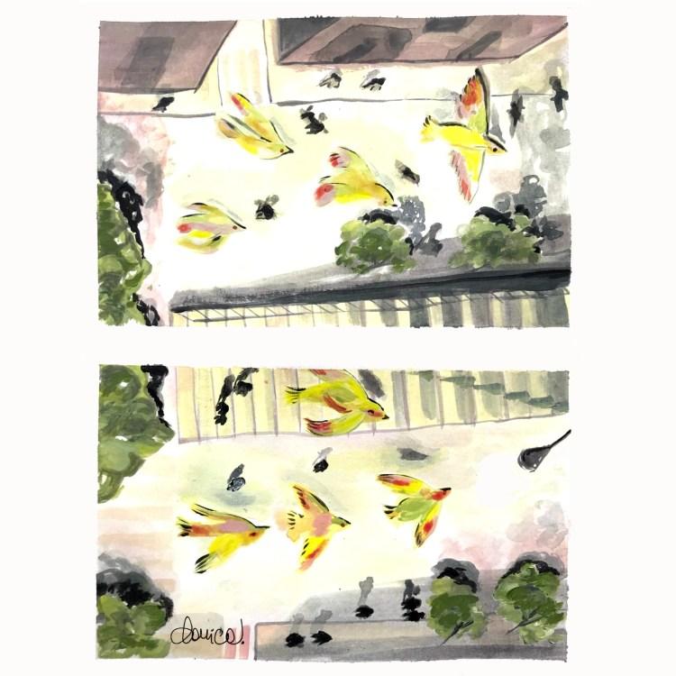Dove volano i gabbiani. Poesia di Chiara Milazzo illustrata da Daniela Calandra. Volat.blog