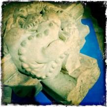 Dragons at York Museum
