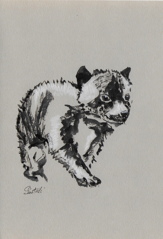 Claudine Santelli-BB loup-